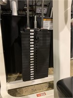 Life Fitness Lateral Raise Selectorized