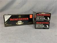 Winchester Supreme Ballistic Silvertip 223 WSSM