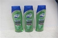 (3) Dial Holiday Body Wash Winter Fresh, 473ml