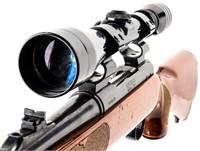 Gun Remington 700 Bolt Action Rifle in 30-06 SPRG