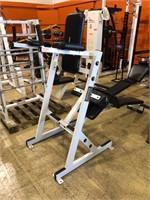 Hammer Strength Vertical Knee Raise / Abdominal