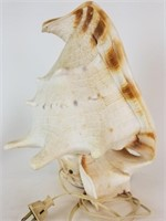 Large Conch shell lamp, night light