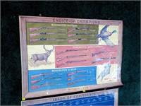 Winchester rifle and shotgun chart