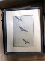 Lot, 7 Albert Dixon Simmons game bird photos,