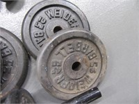 LOT Curl~Lifting Weights Weightlifting
