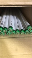 Lot of 13 TL5 Fluorescent Bulbs