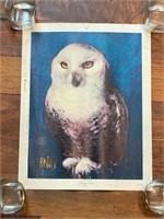 """Snowy Owl"" by Arnau Litho in Spain"