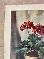 "Reprint 1945 ""Primroses"" Harry Lane Catalda"