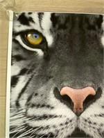 Metro Zoo Tiger Poster