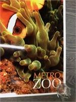 Metro Zoo Clown Fish Poster