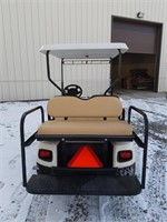 Electric EZGO F101-136559 4 seeds new battery
