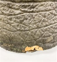Elephant Foot Waste Paper Basket