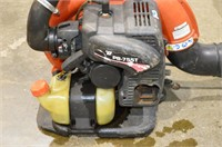 Echo Gas Powered Backpack Blower