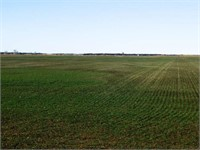 1/31 2-80± ACRES TRACTS * RINGWOOD/MENO OK