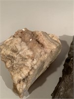 Prehistoric Worm Hold Fossil and Quartzite Stone