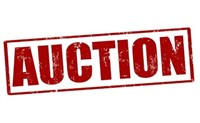 January Online Auction
