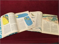 1960s How and Why Wonder Books