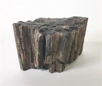 2 Pieces Petrified Wood