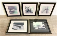 Grouping of Nature Photographs