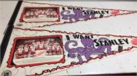 Pair of Red Wings 95-96 Pennants