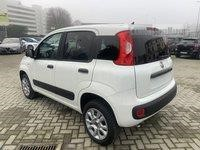 Fiat PANDA used 2019
