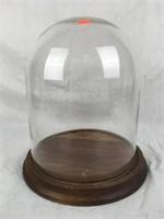 Glass Dome Display