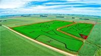 113 Acres m/l in O'Brien County, Iowa