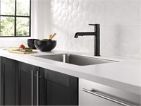 Delta Faucet Trinsic Single-Handle Kitchen Sink