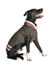 Chilly Dog Boyfriend Dog Sweater, Small