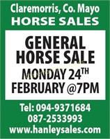 Horse Sales Monday 24th Feb @ 7.00 pm