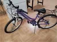 """Girls roadmaster granitepeak 24"""" 18 speed bike"""