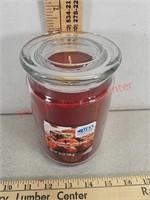 New Apple pumpkin 20 oz candle