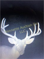 Diverse Mississippi Hunting Land For Sale At Auction