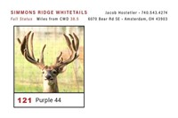 Ohio Fall Trophy Auction