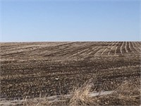 160 Acres +/- O'Brien County-ONLINE ONLY AUCTION