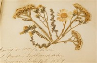 An Antique Flower specimen journal circa 1869