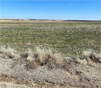 JR&B LLC 936 Acres Gove County, KS