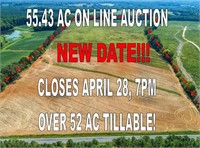 Bing Land Auction
