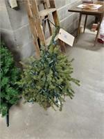 3 Christmas Trees (2' - 3')