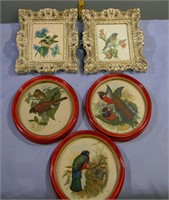 1950's Bird Pictures box lot