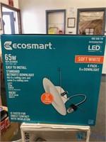 Ecosmart Recessed Lights