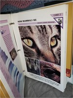 Wildlife Card File Books