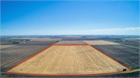 80 Acres m/l in Lincoln Township, Clay County, IA