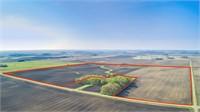 139 Acres m/l in Palo Alto County, Iowa