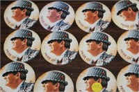12 BEAR BRYANT BUTTONS & PINS