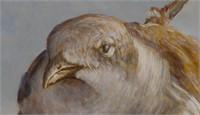 MICHAEL DONNER, Oil on Board, Bird