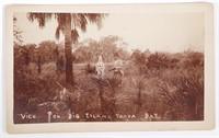 Mounted Photograph, Big Island Tampa Florida, 19C