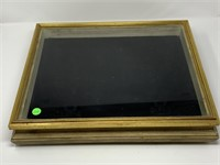 LARGE GOLD FRAMED SHADOW BOX/ CASE