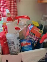 All Cleaning Items Under Sink & On Counter