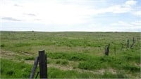 TRACT #1 -  EAST PARCEL, 154 +/- ACRES